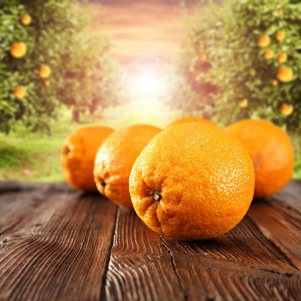 木板上的新鲜橘子