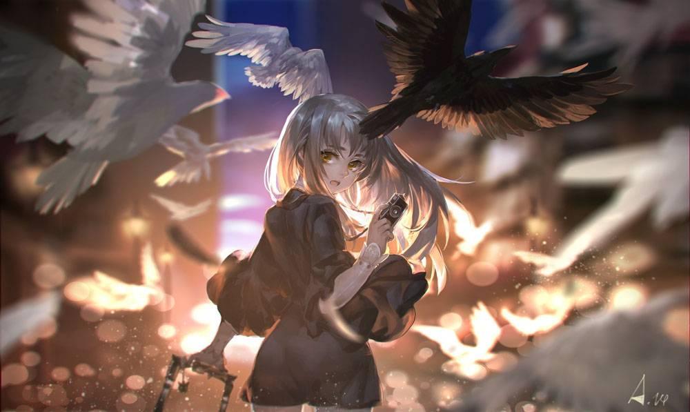 动漫,动漫女孩,鸽子,鸟类,动漫44365图片